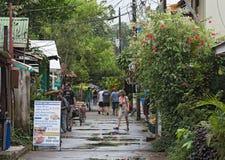 路在多雨天气的,哥斯达黎加tortuguero村庄 免版税库存图片