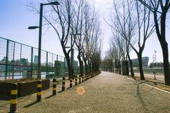 路在奥林匹克公园 免版税库存照片