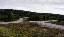 路在山森林里 免版税库存图片