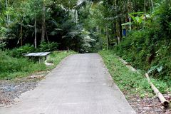 路在有树堆的乡下  图库摄影