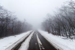 路在有雾的多雪的森林里 免版税库存图片