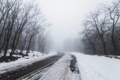 路在有雾的多雪的森林里 免版税库存照片