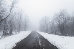 路在有雾的多雪的森林里 免版税图库摄影