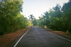 路在果阿印度晴天 免版税库存照片