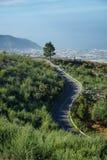 路在泰德峰国家公园,特内里费岛,西班牙 库存照片