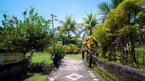 路在热带森林-假期背景里 棕榈树和太阳 r
