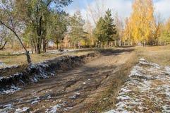 路在秋天公园,第一棵雪,黄色和绿色树 图库摄影
