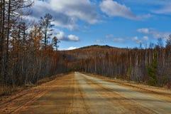 路在秋天 免版税图库摄影