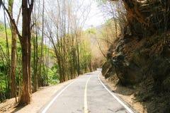 路在竹森林和有大石头在操作Luang国家公园,热,清迈,泰国 热天气和干旱 图库摄影