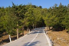 路在罗得岛海岛,希腊上的森林里 库存图片