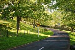 路在豪华的周围的一个公园 免版税库存图片