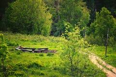 路在绿色森林波兰Bieszczady里 免版税库存图片