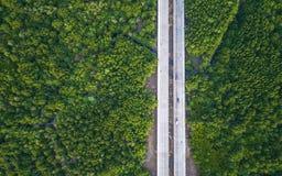 路在绿色美洲红树森林里在普吉岛,泰国 天线vi 库存图片