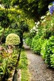 路在Monte的一个美丽的庭院里在丰沙尔马德拉岛上 免版税库存图片