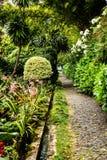 路在Monte的一个美丽的庭院里在丰沙尔马德拉岛上 免版税库存照片