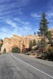 路垂直的视图向Bryce峡谷的 免版税库存照片