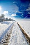 路多雪的冬天 库存照片