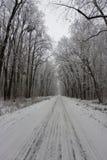 路多雪的冬天 免版税库存图片