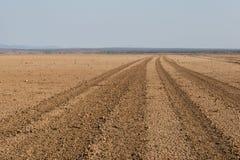 路审阅Amboseli沙漠的,肯尼亚 免版税库存照片