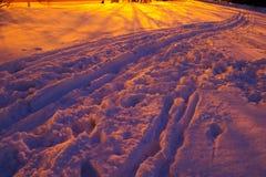 路径冬天 库存图片