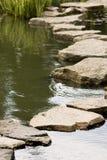 路径向湿扔石头 免版税库存图片