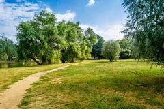 路径在公园 免版税库存照片