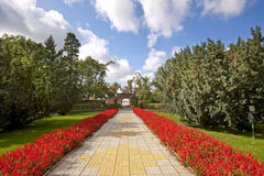 路径在庭院里 库存图片