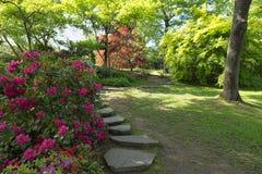 路径在庭院里 免版税图库摄影