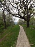 路径穿过公园 库存图片