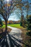 路径穿过公园 库存照片
