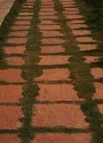 路径穿过公园 免版税库存照片