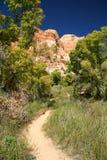 路径穿过小牛小河峡谷 库存图片