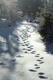 路径雪 免版税库存图片