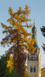 路德教会在Dubulti, Jurmala,拉脱维亚 图库摄影
