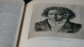 路德维希・凡・贝多芬画象 库存例证