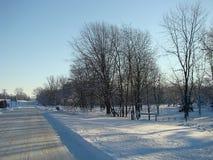 路旁冬天 免版税库存图片