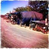 路旁游人南非 库存照片