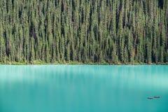路易丝湖的皮艇由大冷杉tre森林backdropped 库存图片
