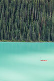 路易丝湖的皮艇由大冷杉tre森林backdropped 免版税库存照片