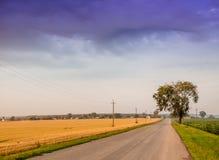 路是在领域中间 与分类的夏天风景 库存图片