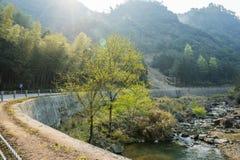 路曲线和溪 库存照片