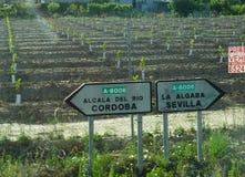 路标向科多巴和塞维利亚,西班牙 免版税库存图片