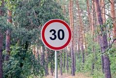 路标在一条路附近的限速在杉木森林附近 库存照片