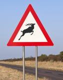 路标纳米比亚 免版税库存照片