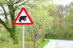 路标-警告在路1的青蛙 库存图片
