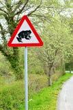 路标-警告在路2的青蛙 库存照片