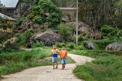 路的两个印度尼西亚男孩在塔娜Toraja 免版税库存照片