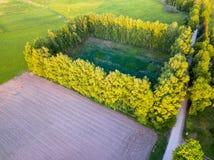 路的寄生虫照片在树之间的在五颜六色的早期的春天- 图库摄影