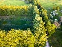 路的寄生虫照片在树之间的在五颜六色的早期的春天- 免版税图库摄影