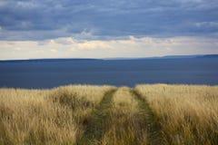 路的末端在国家天际蓝色海和天空的 免版税库存照片